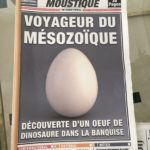 Moustique front page, 'Voyager from the Mesozoic Era' egg – Teaser for Spirou & Fantasio film (image from twitter.com/marcmissonnier)